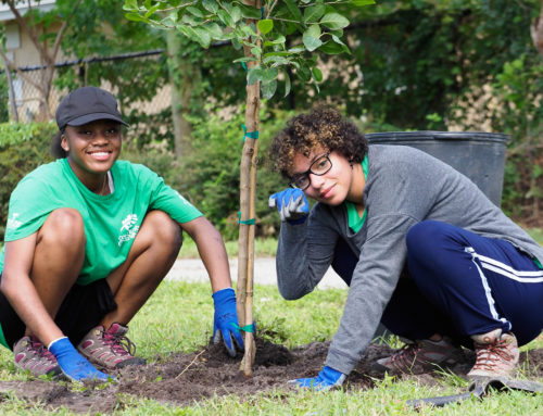 COME TOGETHER. RIGHT NOW….AND PLANT TREES
